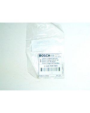 แปรงถ่าน GBM1000 1619P09560 Bosch