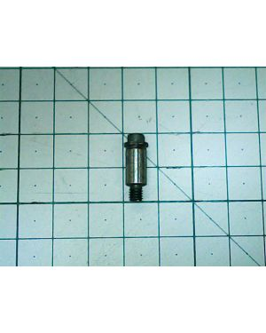 Locking Pin AG10-100(24) 036020001019 MWK