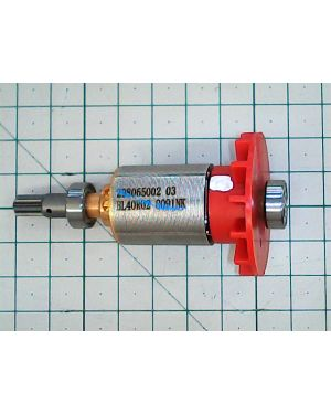 Rotor Assembly M12 CID(74) 202184001 MWK